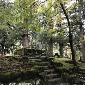 Eihei-ji Garten